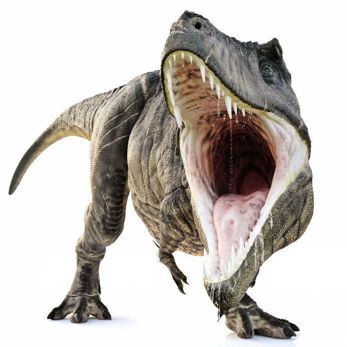 tyrannosaurus rex home care software