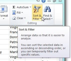 Screenshot of Spreadsheet Sort Filter